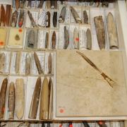 Belemniten aus der Sammlung Keupp
