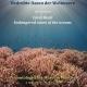 Fotoausstellung Korallenriffe