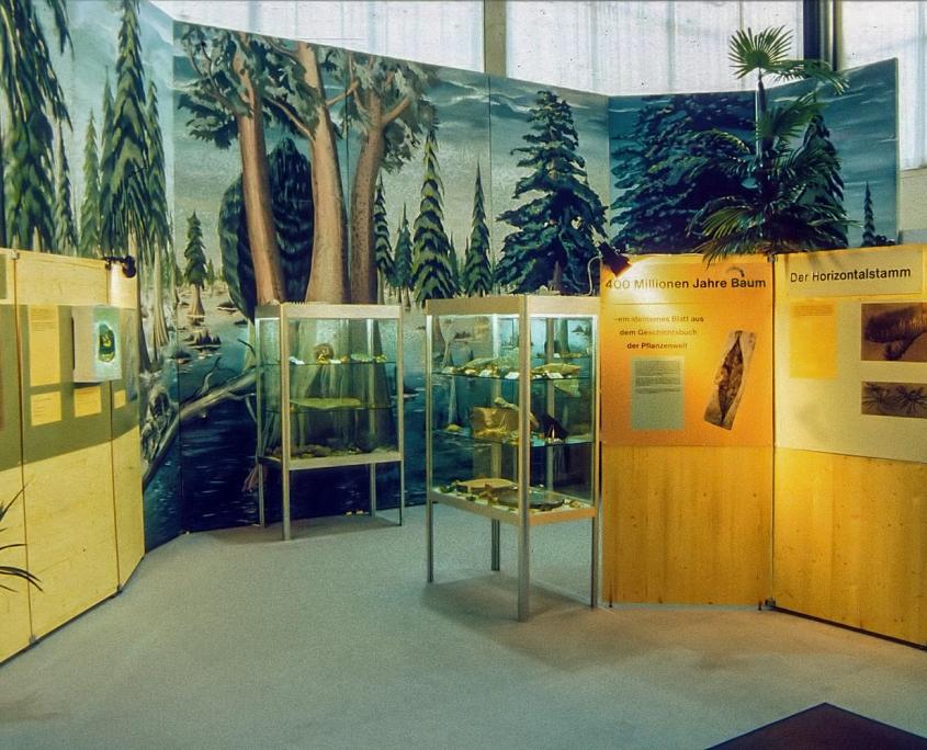 Ausstellung 400 Mio. Jahre Baum
